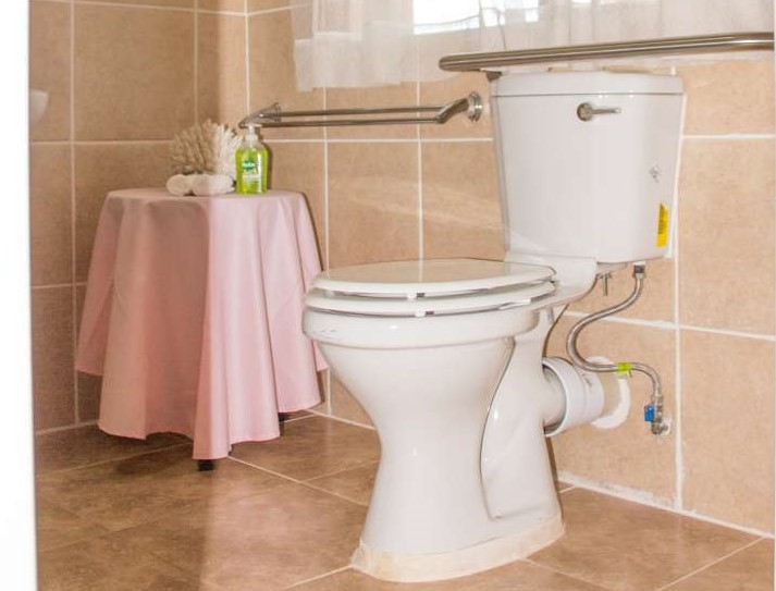 Leopard Room Raised Toilet